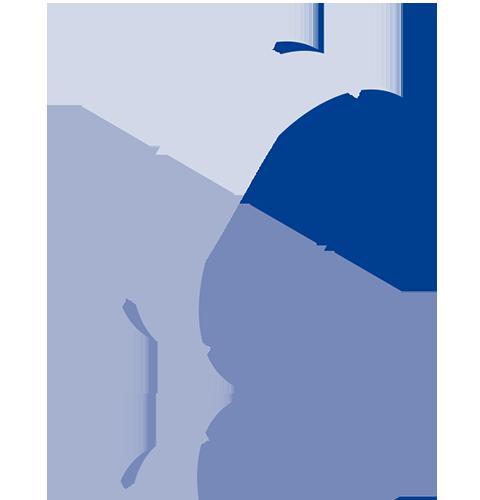 Logo-SAE-ConnectIT_480_01