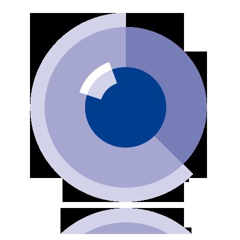 Logo_visIT_spiegel